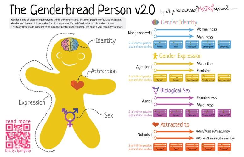genderbread-2-1